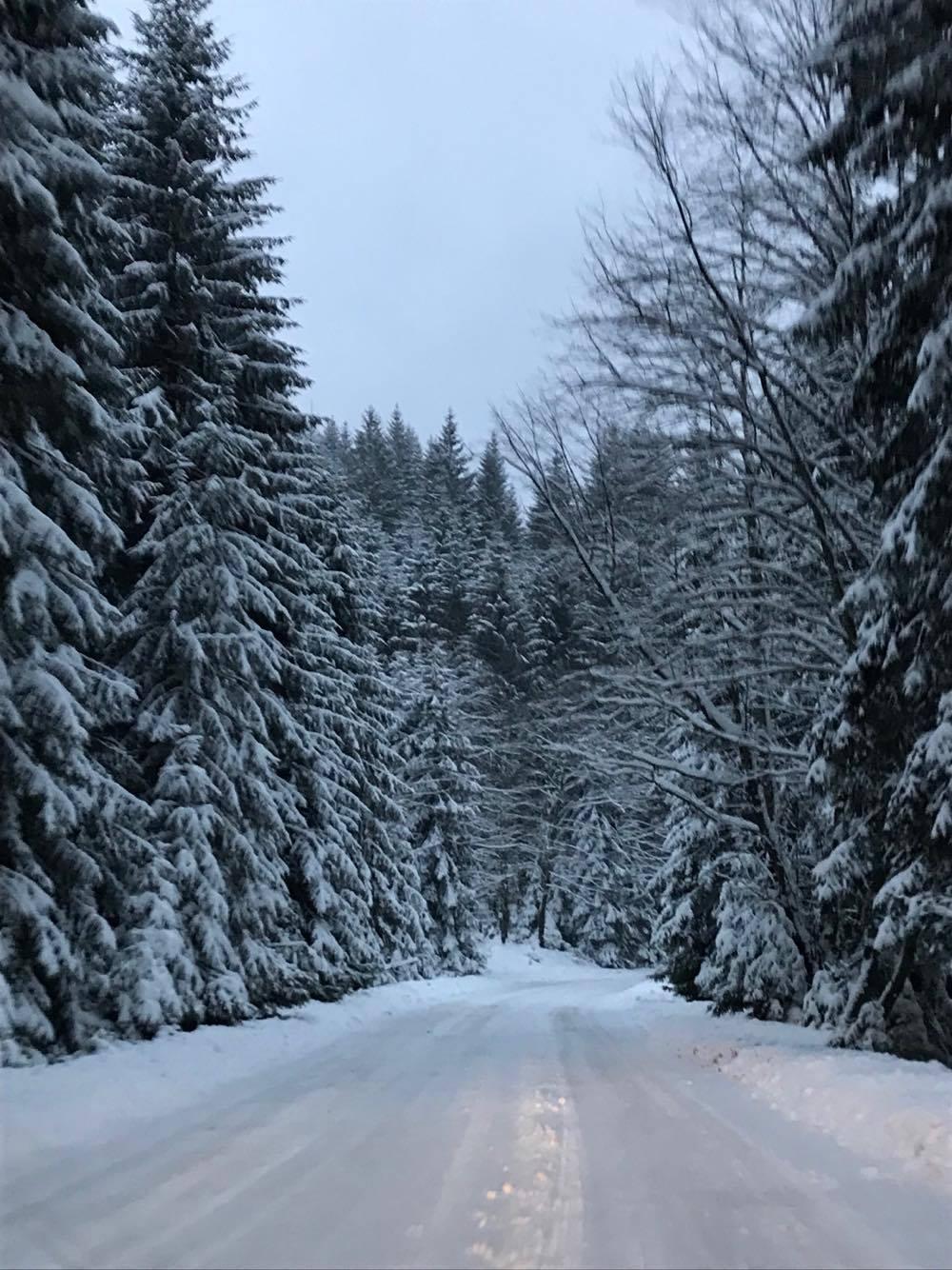 Rovaniemi, acasă la Moș Crăciun