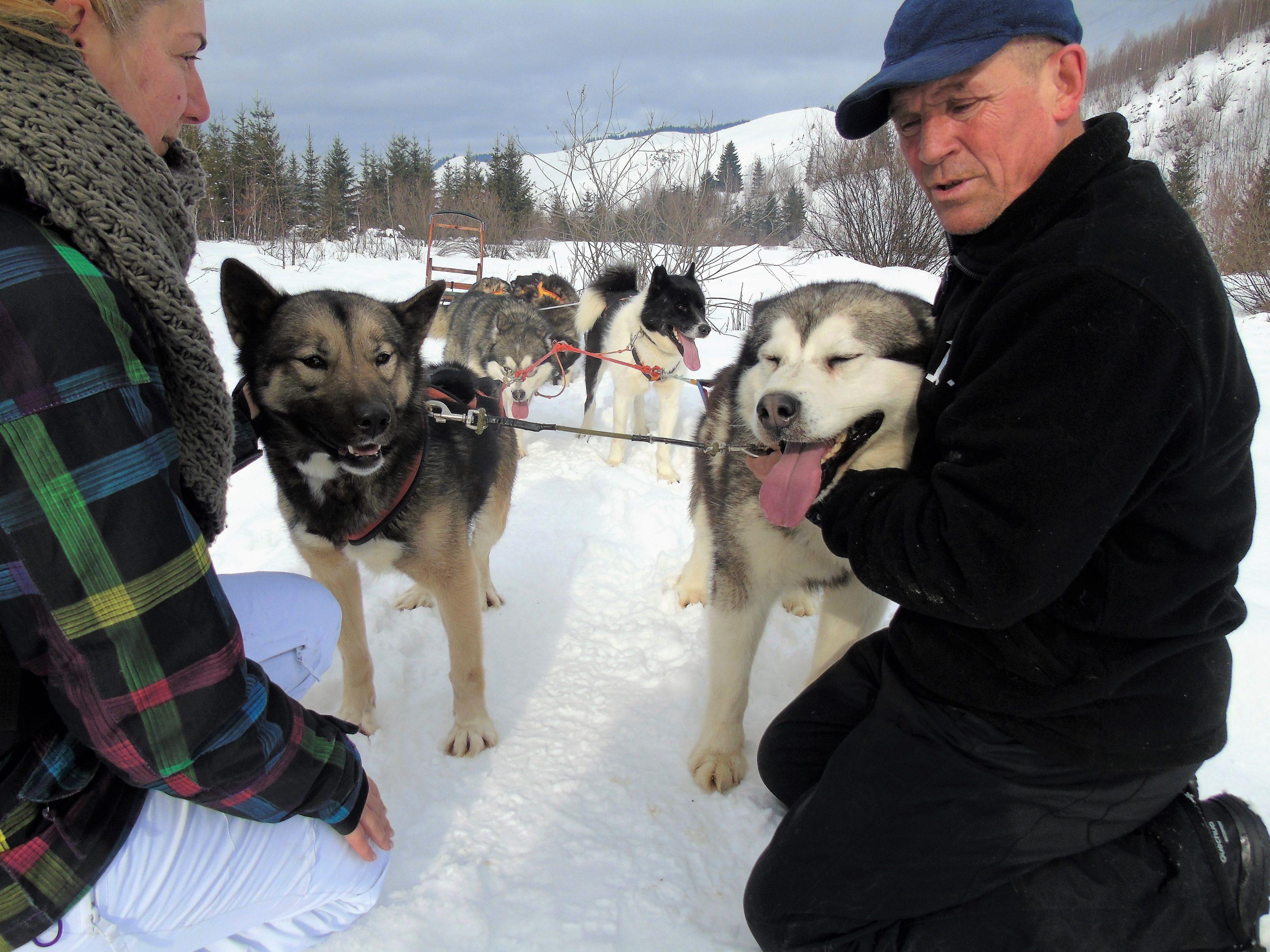 Experiența pozitiva a anului: plimbarea cu câinii in Bălan